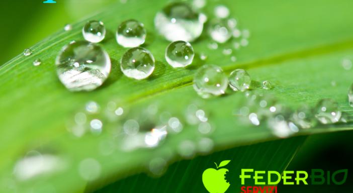 FederBio Servizi propone Start Up Bio, l'Erasmus degli agricoltori biologici