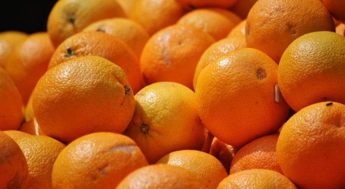 Le arance bio portoghesi si preparano a sbarcare in Scandinavia