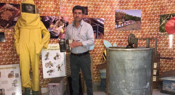 A Zafferana Etnea si vuole salvare dall'estinzione l'ape nera siciliana