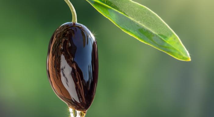 Olio EVO bio: durante il lockdown +15% dei consumi anno su anno