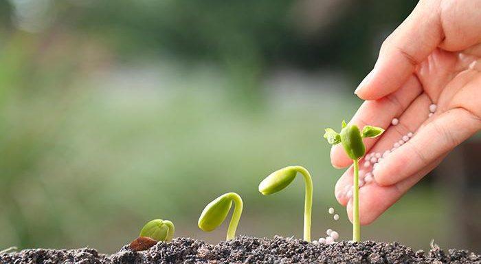 Fertilizzanti naturali, l'Italia in prima linea